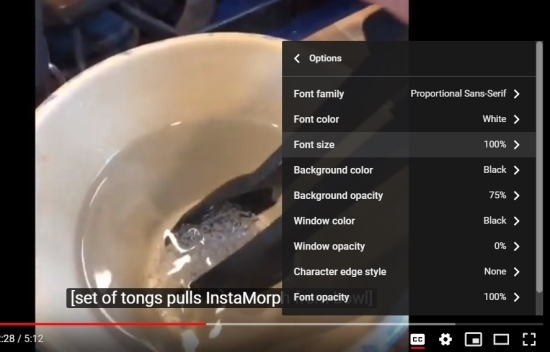 Screenshot of the YouTube player showing the subtitles options menu open