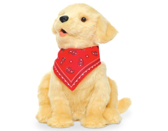 A toy golden retriever puppy with red bandanna.