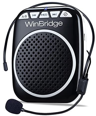"""A speaker with a headset equipped with a microphone. """"WinBridge"""" is branded on the front."""